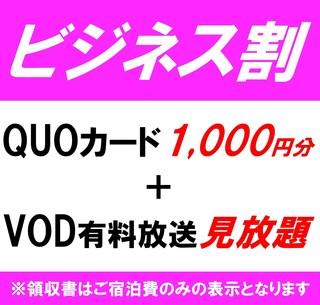【出張プラン】QUOカード1000円+VOD有料放送見放題☆1名様利用(素泊り)