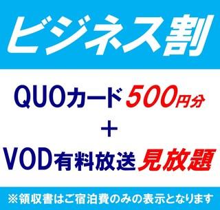 【出張プラン】QUOカード500円+VOD有料放送見放題☆1名様利用(素泊り)