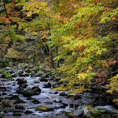 【高層階をお約束】美しい洞爺湖や大自然を眼下に。ゆるやかに流れる洞爺時間を過ごす