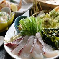 【平日2組限定】朝獲れ地魚メイン!量は控えめ♪お得なプラン☆<トロ箱ミニ御膳>