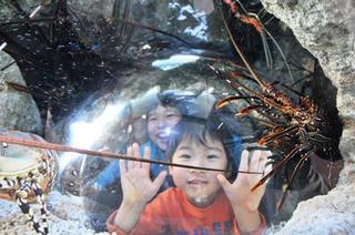 家族旅行にオススメ♪<環境水族館>アクアマリンふくしま【朝食付き】プラン☆幼児の添い寝無料☆