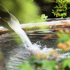 【一人旅応援】フリーWifiでビジネスにも最適♪のんびり&気楽な新平湯を満喫!1泊2食付【現金特価】
