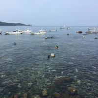 ≪2食付・スタンダード≫島の恵★近海の獲れたて鮮魚を堪能!
