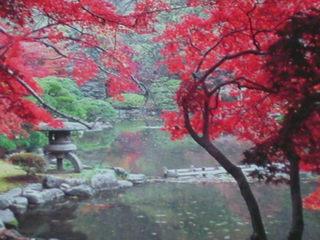 【施設内全面禁】天然温泉一泊朝食付きゆったりプラン