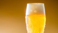 【 平日限定 】大瓶ビール一本の特典付&温泉24H入浴OK!<1泊2食付>