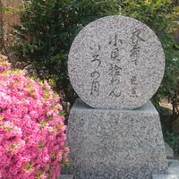 芭蕉を訪ねる旅 ≪地魚の色ヶ浜コース≫(1泊2食)
