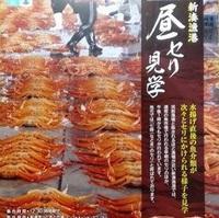 【1泊2食・部屋食!】【日本唯一!】新湊蟹の昼セリ見学体験とホックホク茹でたて蟹を食べれるプラン♪