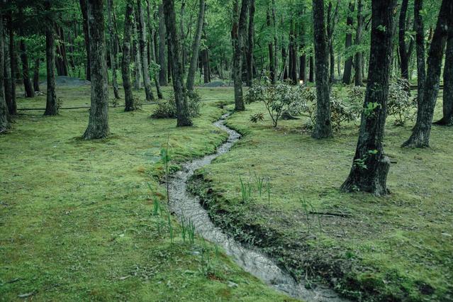 白州・尾白の森名水公園べるが 関連画像 6枚目 楽天トラベル提供