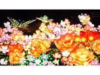【グランイルミ入園券付】TVで話題の新スポット☆伊豆の夜をロマンティックに過ごす特別な時間♪