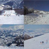 【スキープラン】8つのスキー場で使えるすべりめぐり券付き〜越後の味覚を味わうディナーはお部屋食で〜