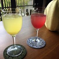 【楽天限定★旅行応援】ポイント2倍!女将の手作り自家製酵素ジュースと夕・朝食付