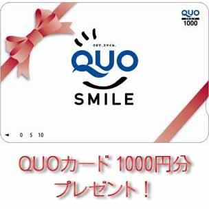 ◆クオカード(1000円分)付 ビジネスプラン!!◆