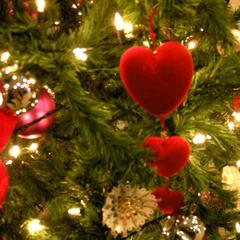 【クリスマス特別メニュー★イタリアン/グレードアップ】お肉もお魚も楽しめる★特別な記念日旅行に◎