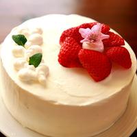【カップルも家族も!】ケーキ&スパークリングワイン付ディナー♪1泊2食付き