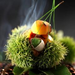 【9月限定】 松茸を味わう  特選プラン◆翠-SUI-◆