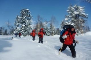 スノーシューハイキング(半日)&フルコースディナープラン