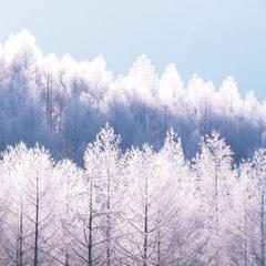 3月限定 冬満喫!! 貸しコテージプラン ◆コテージ自炊プラン◆