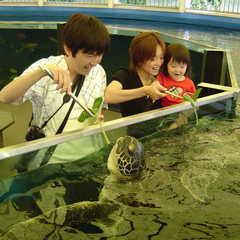 ファミリー旅行【1泊2食】 ★大人気【越前松島水族館入場券付】