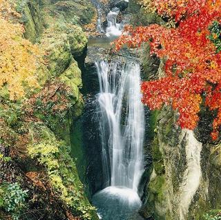 ■秋の味覚■旬の食材をご堪能いただける和食会席!貸切家族風呂有り(2食付)