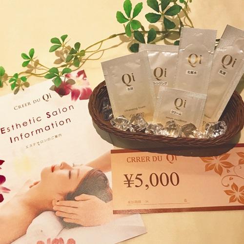 【1日5室限定】身軽な旅行に最適!資生堂化粧品Qiサンプルセット&エステ割引券付