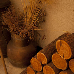 【1泊2食】【通年:旬の食材使用】白樺スタンダードプラン