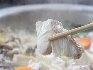 【クエ×熊野牛】最強コラボ・プラン★★旨味たっぷりのクエをあったか鍋の後はお楽しみ雑炊付き♪