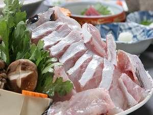 【クエのフルコース】ぷりぷり!和歌山の「クエ」を食べ尽くす♪