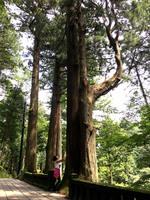 関東屈指のパワースポット「榛名神社」参拝ツアー付き!心と体をデトックス&リフレッシュ◎プチ断食プラン