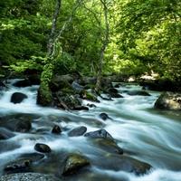 【オールインクルーシブ×春の美食】新緑の秘湯で過ごす、優雅な滞在/春の米沢牛会席+ロングステイ