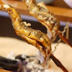 【夏秋限定】岩魚釣り付!炭火焼きプラン