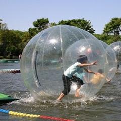 伊豆シャボテン公園orぐらんぱる公園入場券付プラン お天気で決めてバッチリ遊ぼう!