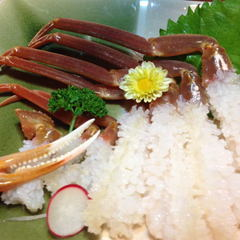 さき楽28【ゆで蟹2人で1杯】越前がに(大)フルコース【訳ありだけどやっぱり三国産が美味い!】