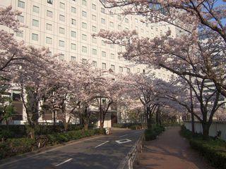 春を彩る♪お部屋は目黒川ビュー ルームサービスの「夜桜御膳」2食付き