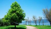【ビワイチ応援】自転車でびわ湖を感じる♪サイクリスト応援プラン (朝食付)