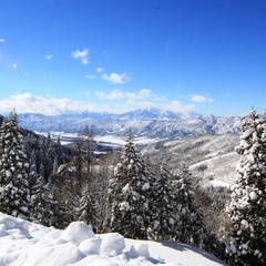 【野沢温泉スキー場】 スキーヤー必見!ゲレンデ食堂で使える食事券付き 【温泉&スノー】