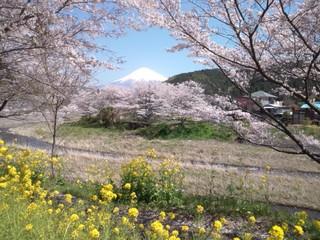 【富士山と温泉を楽しむ★】富士山世界文化遺産登録記念プラン