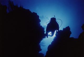【温泉でいやされよう】体験ダイビング1泊2食付き+温泉露天貸切プラン