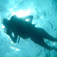 【体験ダイビング】伊豆の海で色とりどりの魚に出会おう◆1泊2食付◆天然温泉貸切♪