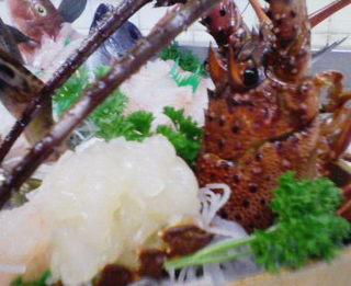 ≪美し国≫地魚3種・鮑・伊勢海老舟盛り☆伊勢海老塩焼き