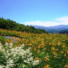 【ドライブ旅】白山白川郷ホワイトロード片道無料◆間近で感じる名峰の大自然〜館内ドリンクフリー