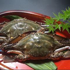 【50歳以上限定】《1000円割引》瀬戸内天然かに料理プラン [1泊2食]