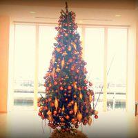 【Merry Christmas】夜景を愉しむ全室海側/2食付(1万2千円フルコース付)