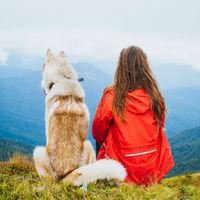 【ペットと泊まりたい宿選出】一棟貸切のプライベート空間で愛犬とゆっくりくつろげるプラン