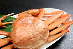 【冬といえばカニ】日本海の冬が味わえる♪<紅ズワイガニ>お一人様 まるごと一杯付き〜