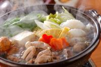 【季節限定味覚】ちゃんこ鍋プラン