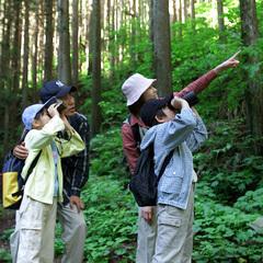 【素泊り】〜野鳥の森で森林浴〜御池の麓でアウトドア三昧<現金特価>