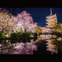 【 最大24時間ステイ 】京都四条の中心地 ホテルを拠点に京都観光とホテルでティータイム [素泊]