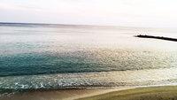 【梅雨の連泊割】<2泊から3泊 朝食付き> 沖縄北部「やんばる」で遊びつくそう! *夕食選択可