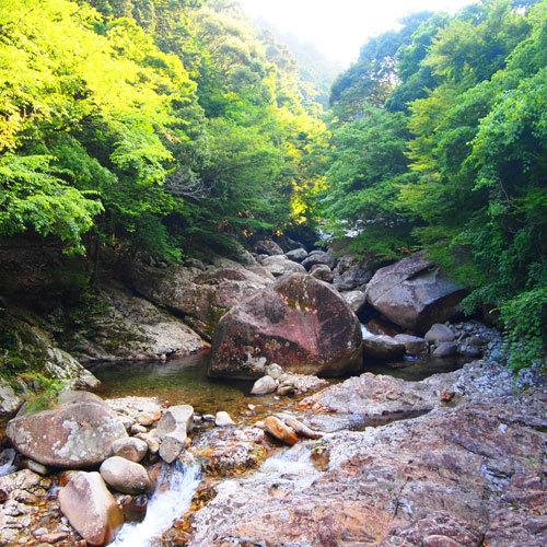 自然を満喫!渓谷散策★滑床渓谷を楽しむ<<ネイチャーガイド付きプラン!!>>