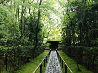 WEB決済限定◆はんなり京都観光プラン◆